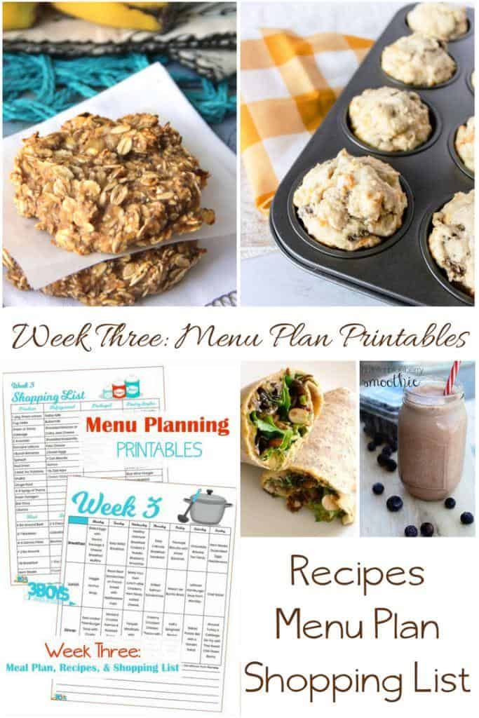 This week's menu plan helps combat the winter doldrums with a decadent chocolate breakfast, protein rich lunches, and hearty soup dinner recipes.  Includes recipes, printable menu plan, and printable shopping lists.