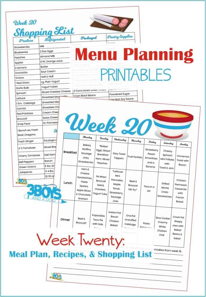 Week Twenty Menu Plan Recipes and Shopping List