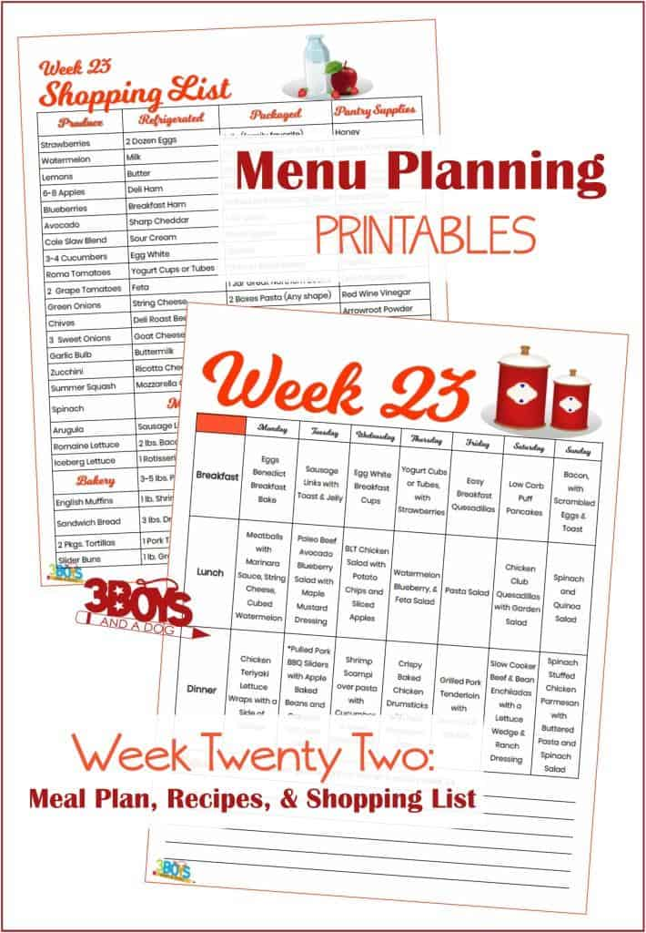 Week Twenty Three Menu Plan Recipes and Shopping List