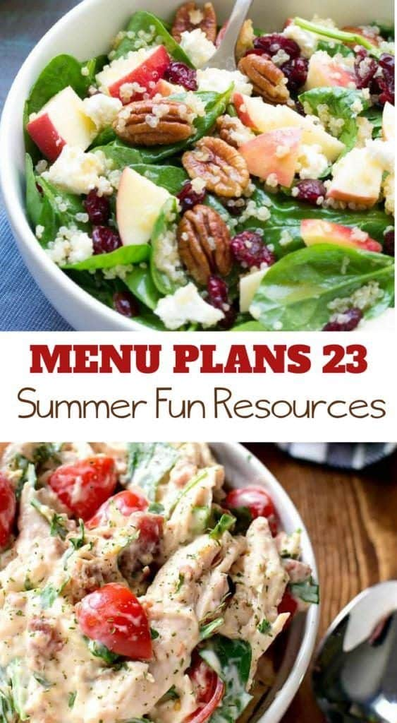 menu plans 23 . summer fun resources
