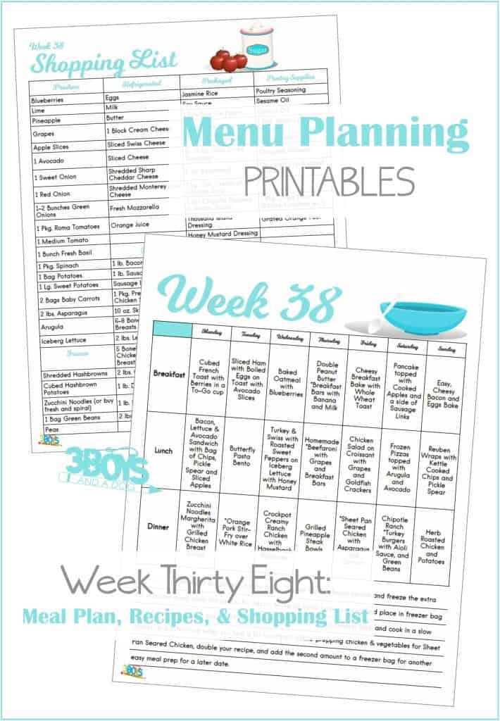 Week Thirty Eight Menu Plan Recipes and Shopping List