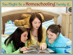 You Might Be a Homeschooling Family If. . .