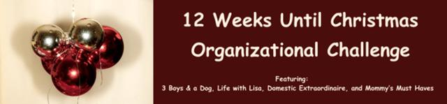 12 weeks banner