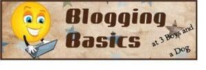 Blogging Basics:  Making Money With Your Blog