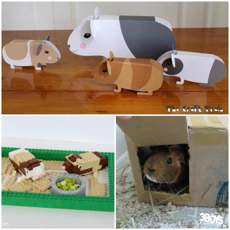 Guinea Pig Crafts