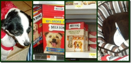 Milk-Bone® Dog Treats Puppy Prep