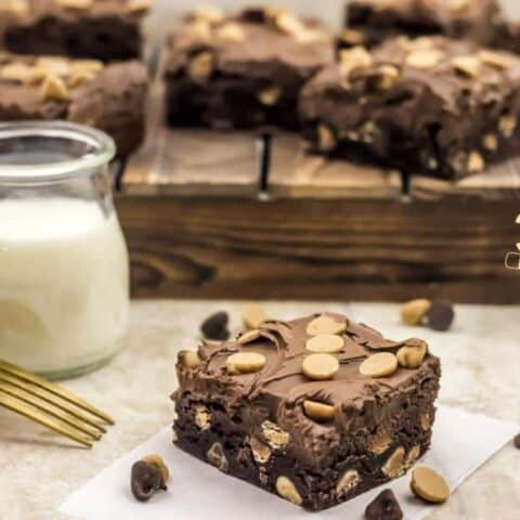 Peanut Butter Chocolate Chunk Brownies