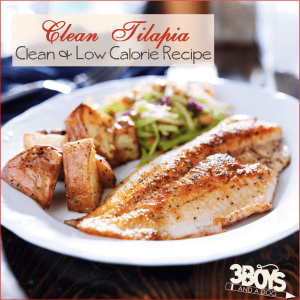 Clean eating tilapia recipe best paleo fish 3 boys and for Tilapia fish recipe