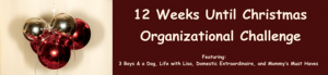 Seven Weeks Until Christmas: Kitchen Organization
