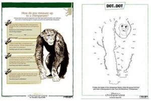 FREE:  CHIMPANZEE Family Activity Pack