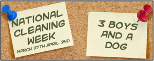 National Cleaning Week:  Start With The Basics