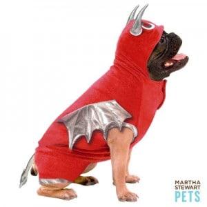 Giveaway:  Martha Stewart Halloween Pet Costume