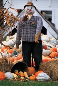 How To: Front Yard Scarecrows