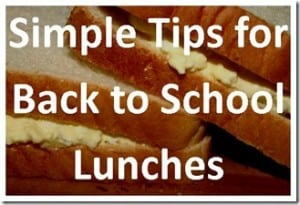 Back to School Lunches eBook only $1.99