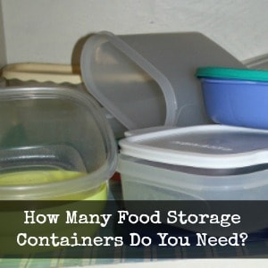 How Many Food Storage Containers Does a Woman Actually Need?