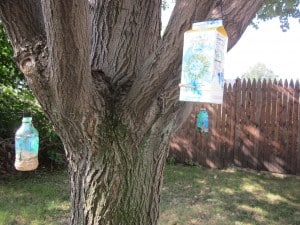 B is for Bird Feeder {And Free Lunch Notes!}