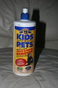 Giveaway:  Kids n Pets Stain Remover