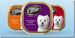 We Spoil Little Orphan Annie with Cesar Meaty Selects!