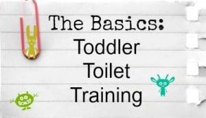 The Basics of Toddler Toilet Training