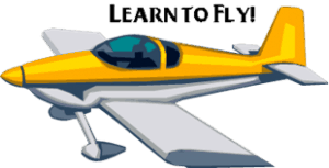What Does it Take to Learn to Fly Airplanes?