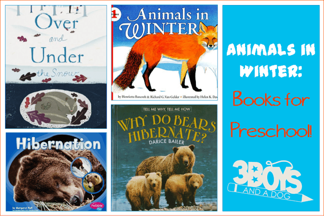 Animals in Winter Books for Preschool