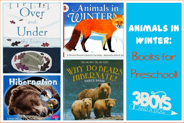 Animals in Winter Books for Preschool
