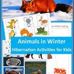 Animals in Winter Hibernation Activities for Kids