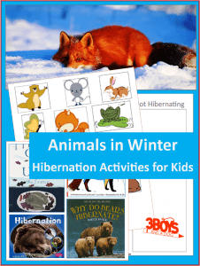 Animals in Winter {Hibernating Printable}