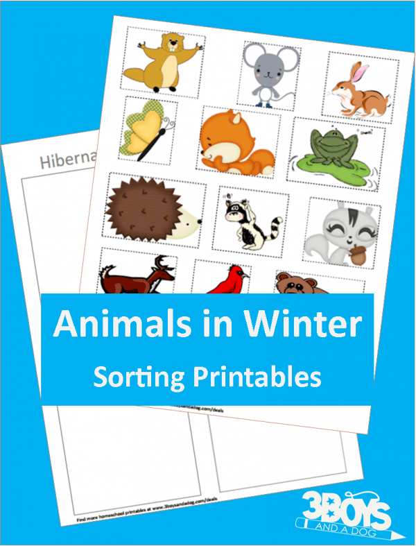 Hibernating or Not Printable for Preschoolers