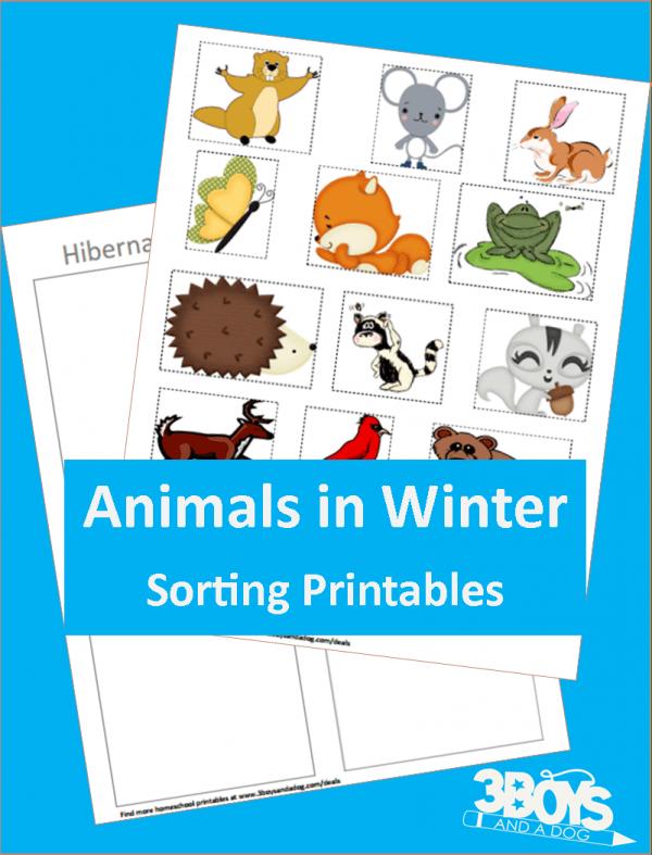 Hibernating or Not Printable for Preschoolers
