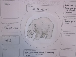 Polar Bear Chart
