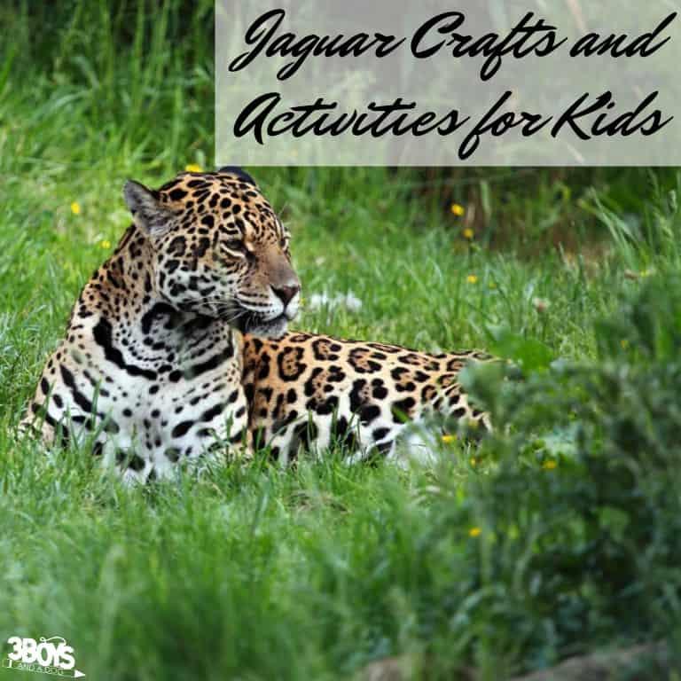 Jaguar Crafts for Kids