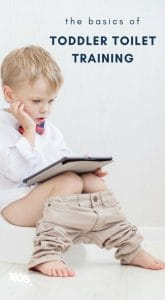 The Basics of Toddler Toilet Training