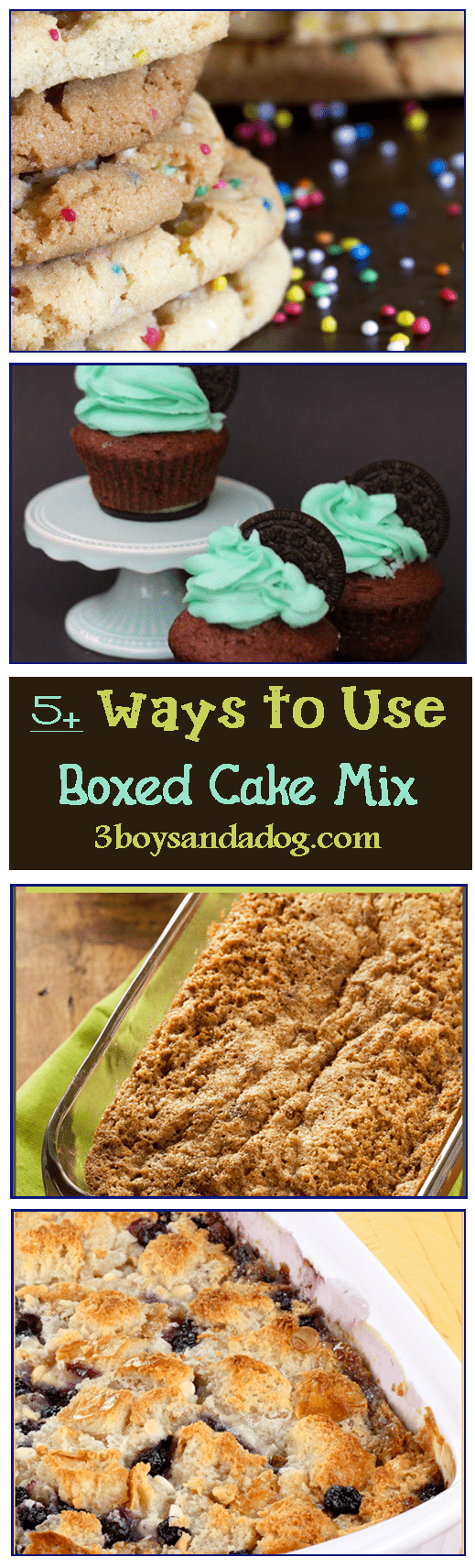 Cake Mix Doctor Chocolate Chip Cake