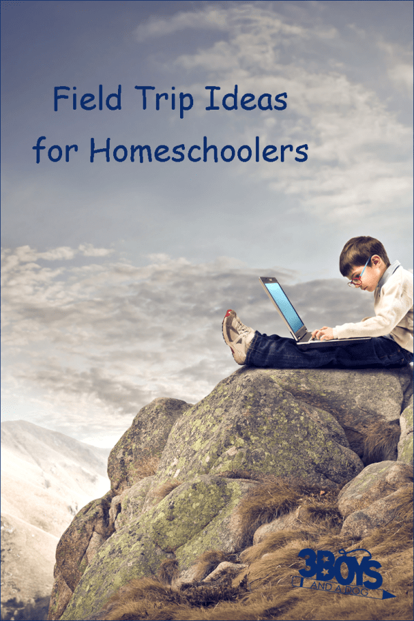 Field Trip Ideas for Homeschooling Parents