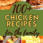 top 100 chicken recipes