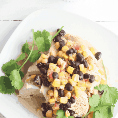 chicken and queso combine with black beans for a delicious and authentic Mexican recipe