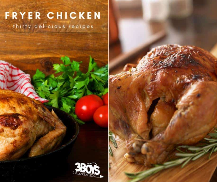 Delicious Fryer Chicken Recipes