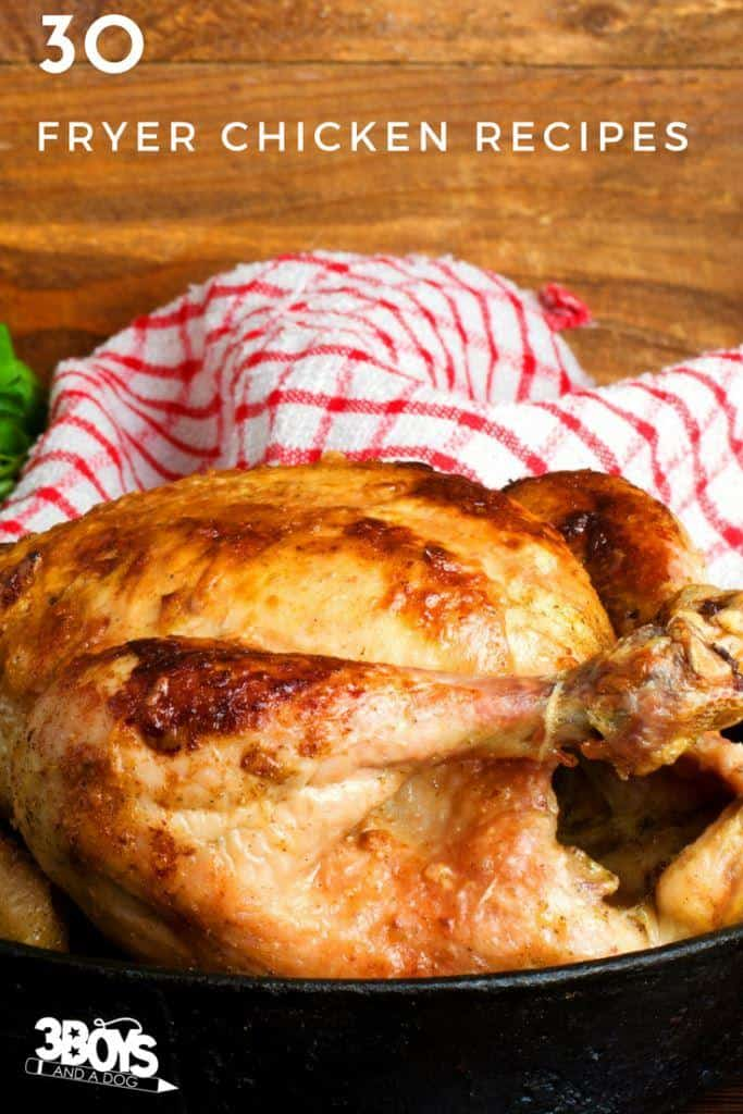 30 quick and easy fryer chicken recipes that are budget friendly