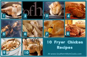 10 Fryer Chicken recipes!