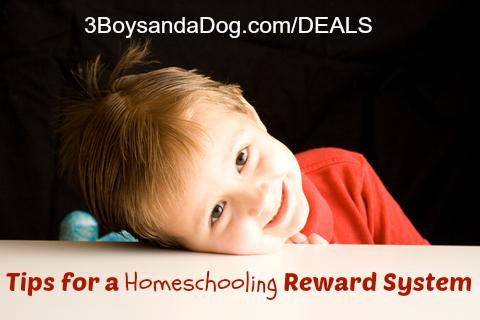 homeschool reward system