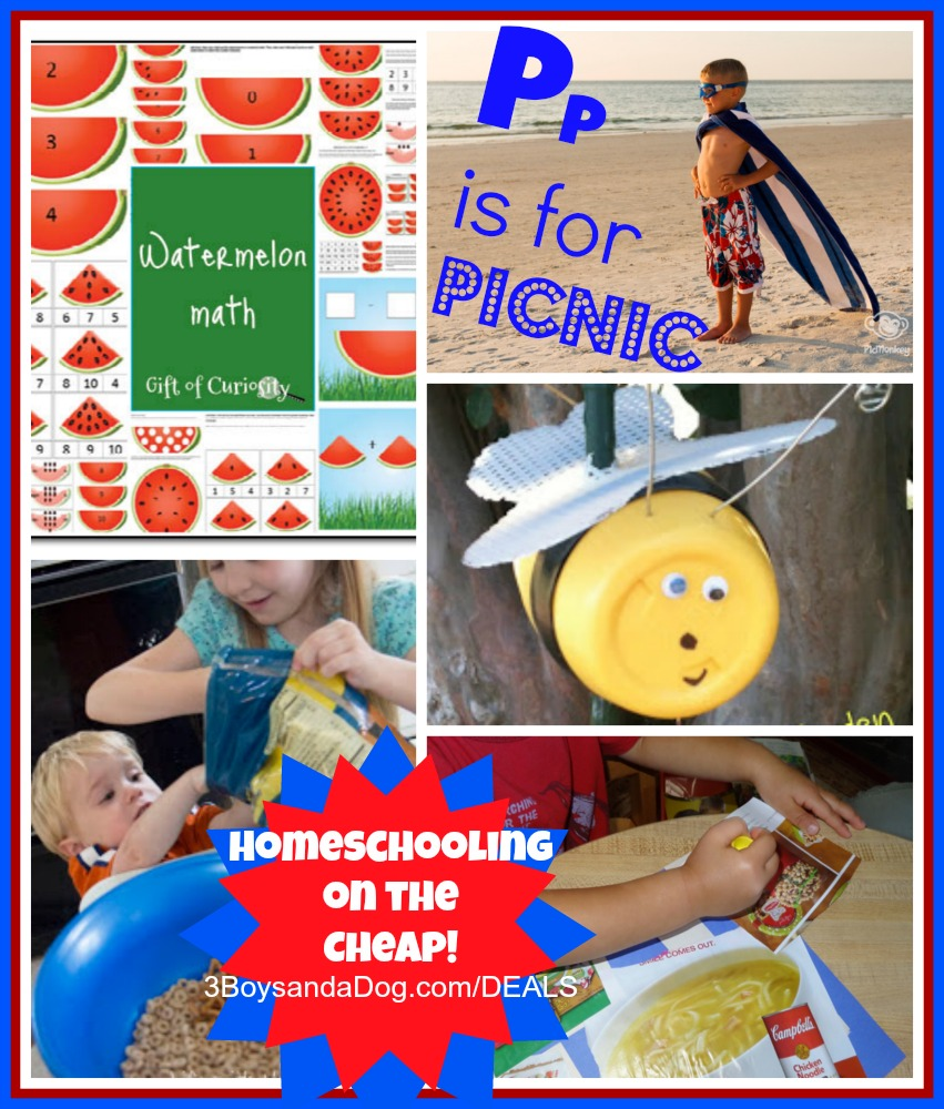 homeschooling on the cheap
