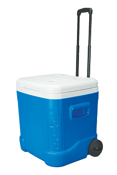 Igloo Cooler #Giveaway on Southern Mom Cooks #UltimateTailgatingParty