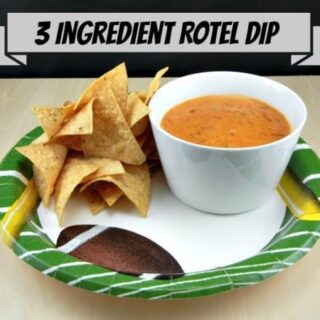 3 Ingredient Rotel Dip from 3 Boys and a Dog