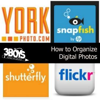 Digital Photo Organizing Image 2