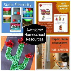 Homeschooling on the Cheap: October 10, 2013