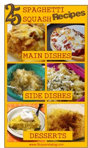 15 Spaghetti Squash Recipes
