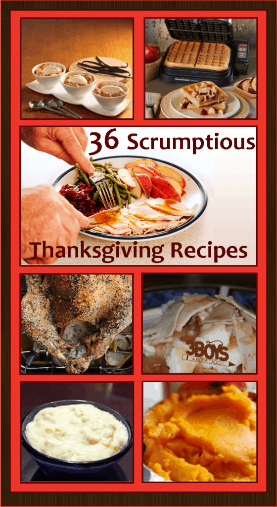 Thanksgiving Side Dishes, Desserts, Main DIsh, and Leftovers