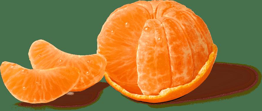 Halo Mandarin Orange