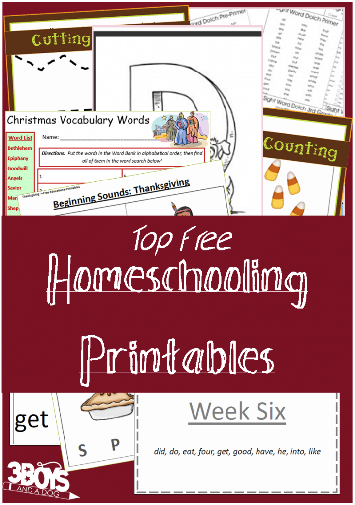 Worksheets For Homeschooling : Top free homeschooling printables boys and a dog